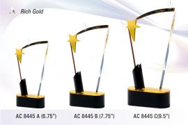 AC_8445-Rich-Gold