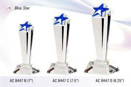AC_8447.-Blue-Star