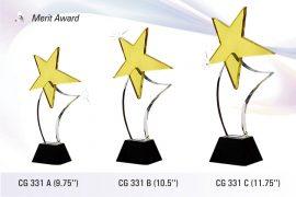 Merit-Award-CG_331